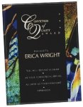 Blue Acrylic Art Plaque Award Achievement Awards