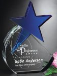 Cerulean Star Achievement Awards