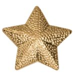 Gold Star Metal Chenille Letter Insignia Chenille Lapel Pins