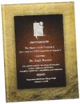 Gold & Burgundy Acrylic Art Plaque Award Employee Awards
