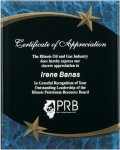 Blue Marble Shooting Star Acrylic Award Recognition Plaque Employee Awards